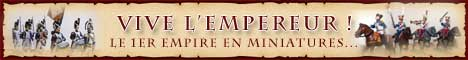 Buste  demie brigade campagne d'Egypte. Banniere_empereur